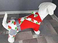 Одежда для собак, комбинезон летний