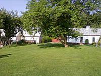 Покос травы,расчистка территории 0664994600