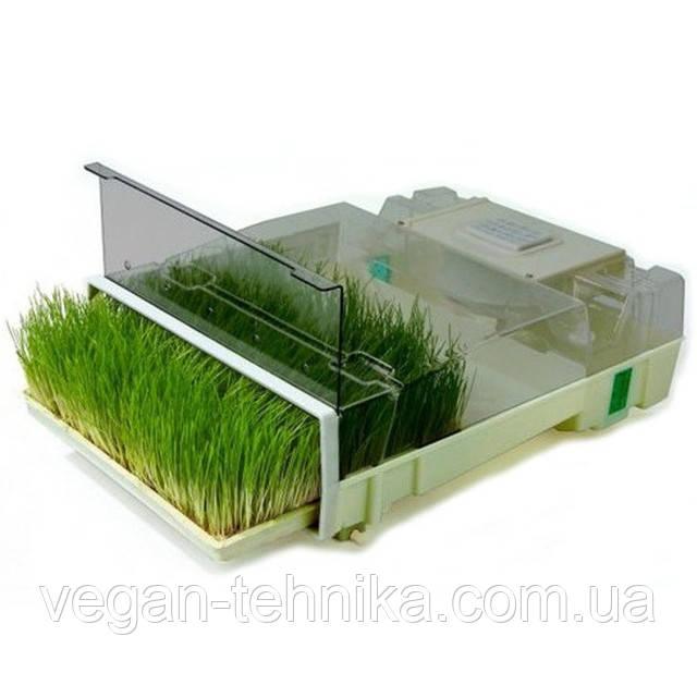 Проращиватели зерен и семян EasyGreen, Tribest, Eschenfelder