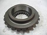 Шестерня Т-40 коническая ведомая (z=23/22) (Т50-1701029-Г), фото 5