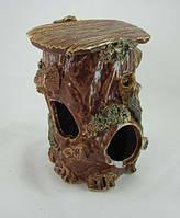 Керамика для аквариума Черепашатник малый, 12х17 см.