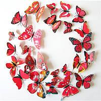 Объемные 3D бабочки на стену (обои) для декора (красные)