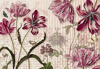 Фотообои флизелиновые на стену 368х254 см 8 листов: Цветы Мериан. Komar 8NW-510
