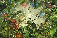 Фотообои флизелиновые на стену 368х248 см 4 листа: Тропический лес. Komar XXL4-031