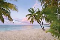 Фотообои флизелиновые на стену 368х248 см 4 листа: Райское утро. Komar XXL4-528