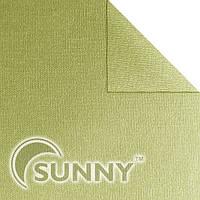 Рулонная штора Maxi Shine 3755