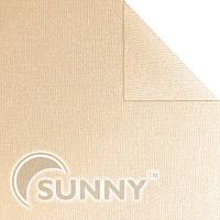 Рулонная штора Maxi Shine 3770