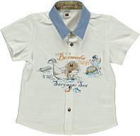 Рубашка детская летняя Tm Bombili на мальчика /Турция/ рост 68 см, 86 см ( 6мес; 18мес)/ белая на пуговицах