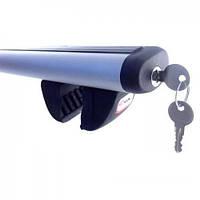 Багажник Futura Aero на рейлинги (алюминиевый)
