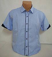 Рубашка мужская короткий рукав p. L