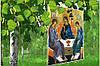 График работы на ближайшие выходные. Праздник святой троицы.