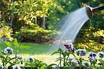 Садовий полив