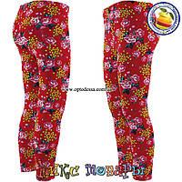 Турецкие лосины с цветами для девочек от 6 до 10 лет (4447-11)