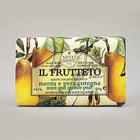 Натуральное мыло Фруктовое - Айвовая груша и мята