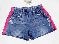 Шорты для девочки Crossfire р.98-128, купить детские шорты оптом