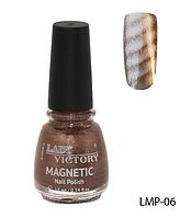 Лак для ногтей «Magnetic» Lady Victory LDV LMP-06 /94-0