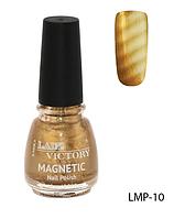 Лак для ногтей «Magnetic» Lady Victory LDV LMP-10 /94-0