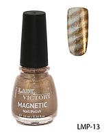 Лак для ногтей «Magnetic» Lady Victory LDV LMP-13 /94-0