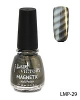 Лак для ногтей «Magnetic» Lady Victory LDV LMP-29 /94-0