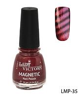 Магнитный лак для ногтей «Magnetic» Lady Victory LDV LMP-35 /94-0
