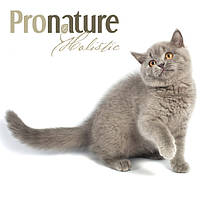 Pronature Holistic для кошек