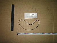 Кольцо уплотнительное (пр-во SsangYong) 0585-141029