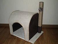 Когтеточка котяча -шалє