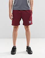 Мужские шорты  с принтом Adidas