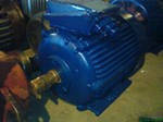 Электродвигатель 4АМС 225М4 (50 кВт,1500 об/мин) асинхронный