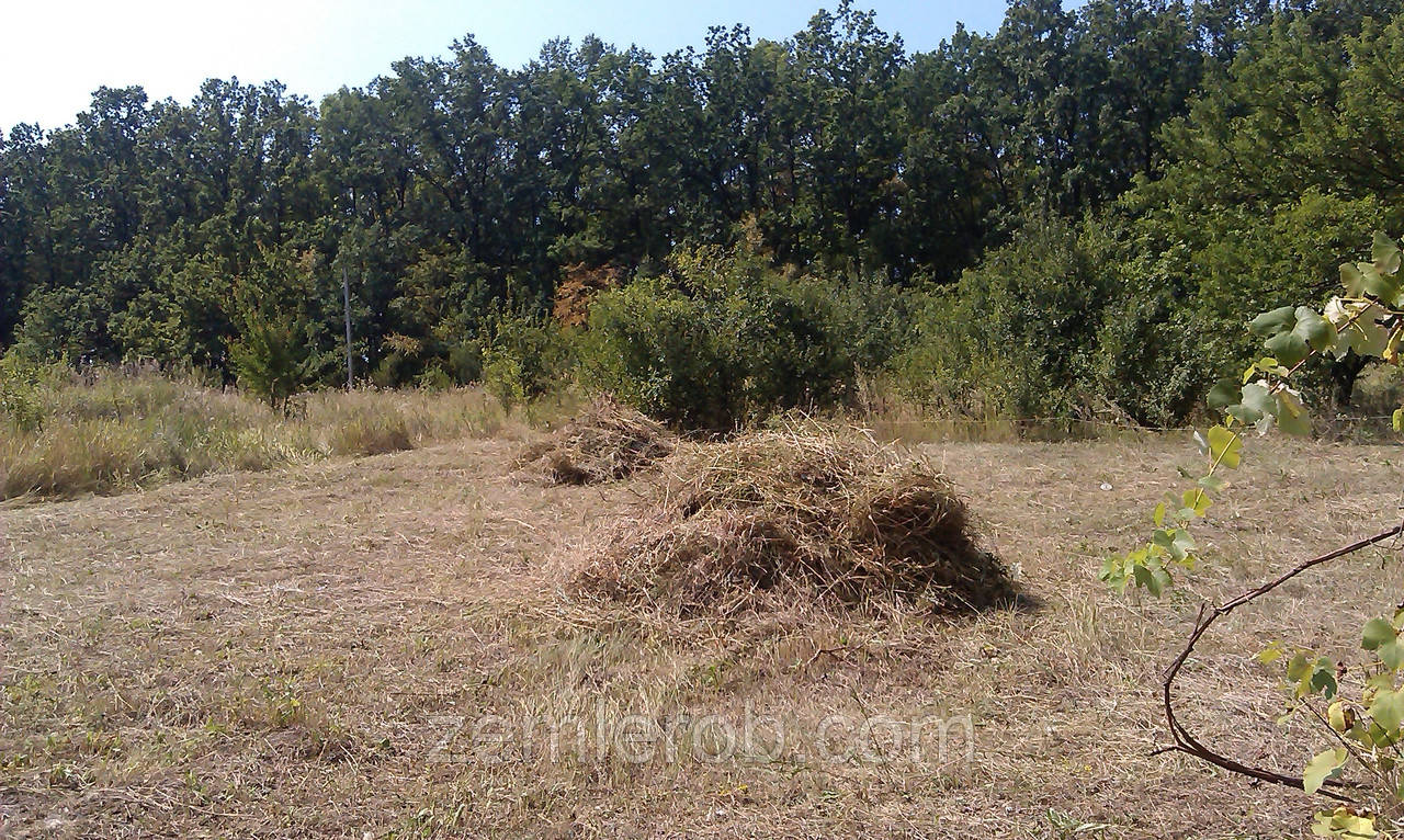 Покос травы