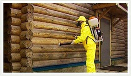 Комплексний хімічний захист дерев'яного будинку