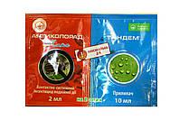 Инсектицид Антиколорад 2 мл +Тандем 10 мл (прилипатель)