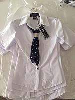 Блузка для девочки с шифоновым галстуком 128-176