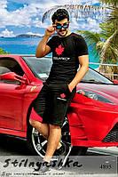 Спортивный мужской костюм Dsquared шорты с футболкой черный с красным