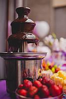 Шоколадный фонтан в прокат