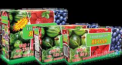 Новоферт ягода 100 гр (водорозчинне добриво NPK 12-12-36+MgO+ме)
