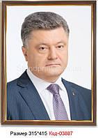 Фото портрет президента Код-03887