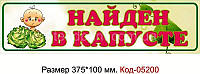 Номер на коляску Код-05200
