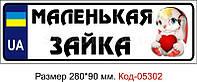 Номер на коляску Код-05302