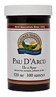 По Д'Арко - мощный антивирус, 100 капсул по 520 мг, Pau D`Arco, NSP
