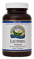 Лецитин для печени и головного мозга, 170 капсул по 560 мг, Lecithin, NSP, США