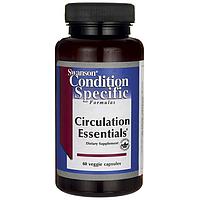 Комплекс витаминов для улучшения кровообращения, Circulation Essentials, Swanson, 60 капсул