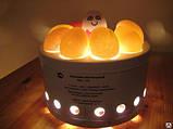 Овоскоп ОН-10 (10 яєць), фото 2