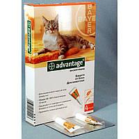 Капли Адвантейдж 40 коты весом до 4 кг 1шт