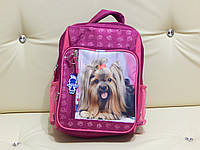 Рюкзак для школьников младших классов , фото 1