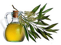 Эфирное масло эвкалипта 1.0 кг (1100 мл)