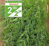 Семена пряных и зеленых культур Укроп Анет (Фасовка: 50 г)