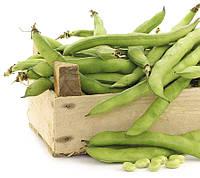Бобы овощные Дольче (Фасовка: 10 г)