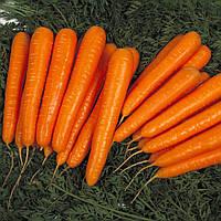 Морковь Лагуна F1 (Фасовка: 400 шт)