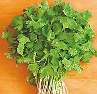 Кориандр салатный Слоуболт (Фасовка: 500 г)